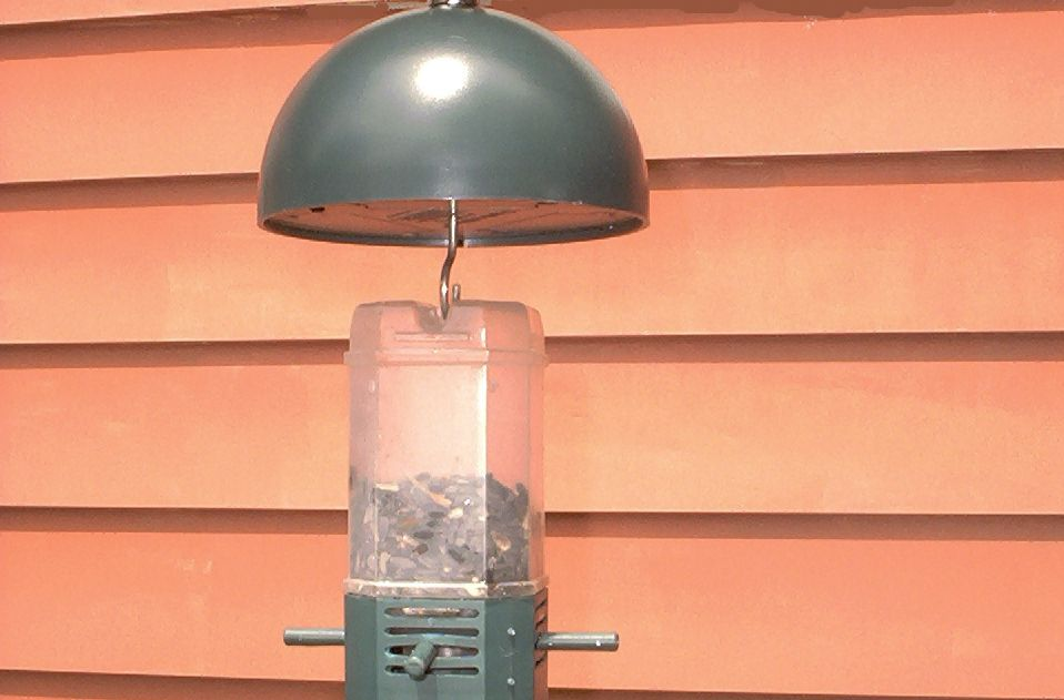 SquirrelStop (image) is a squirrel-proof birdfeeder. The spinning dome at the top is the key.