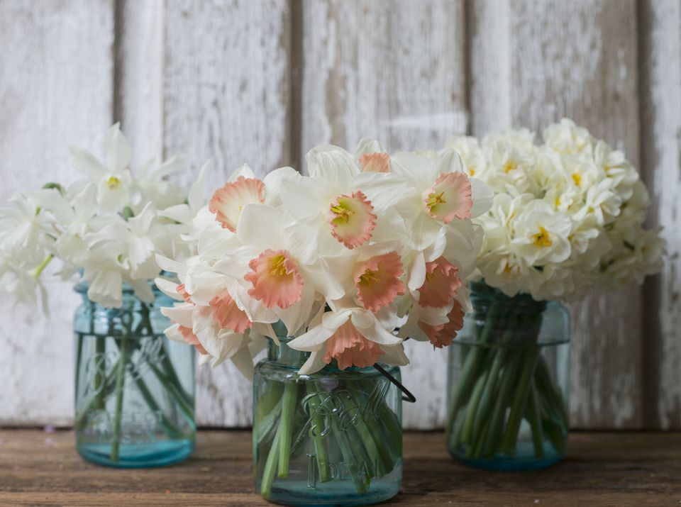 The 12 Best Spring Wedding Flowers In Season