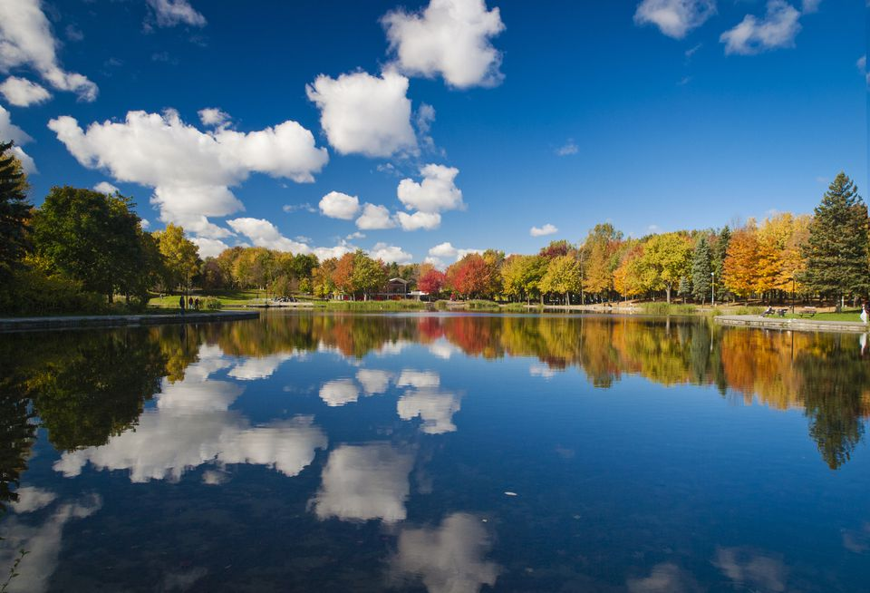 Canada, Quebec, Montreal, Forest reflecting in lake in autumn