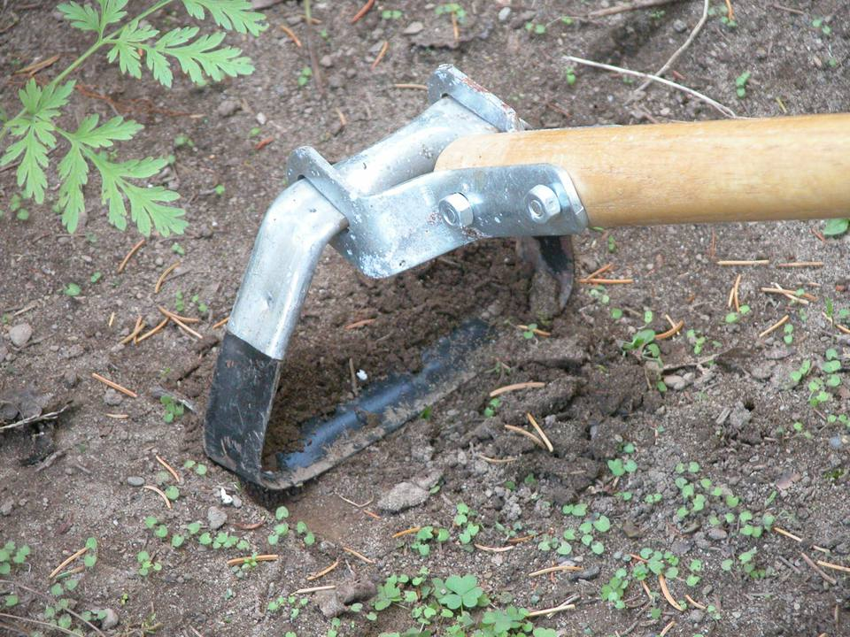 Tools for controlling weeds in the garden for Gardening tools list 94