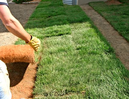Topdressing Helps Level Out An Uneven Lawn