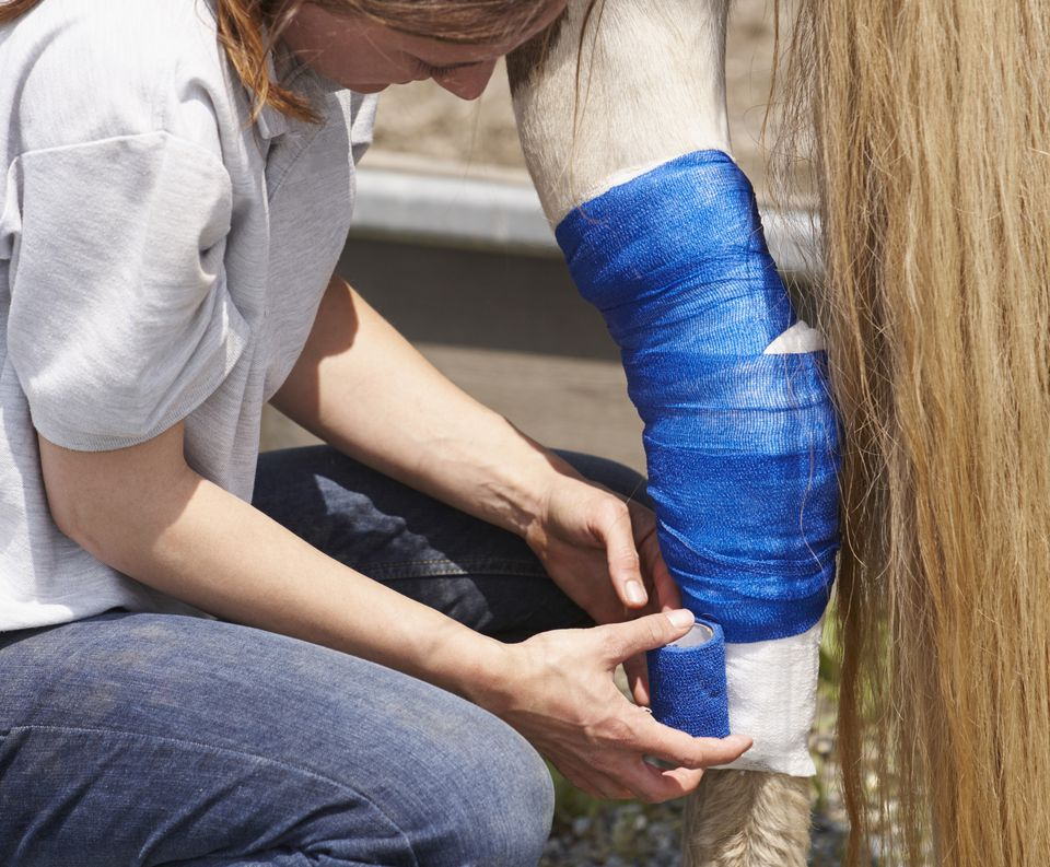 Woman Bandaging Leg Injury
