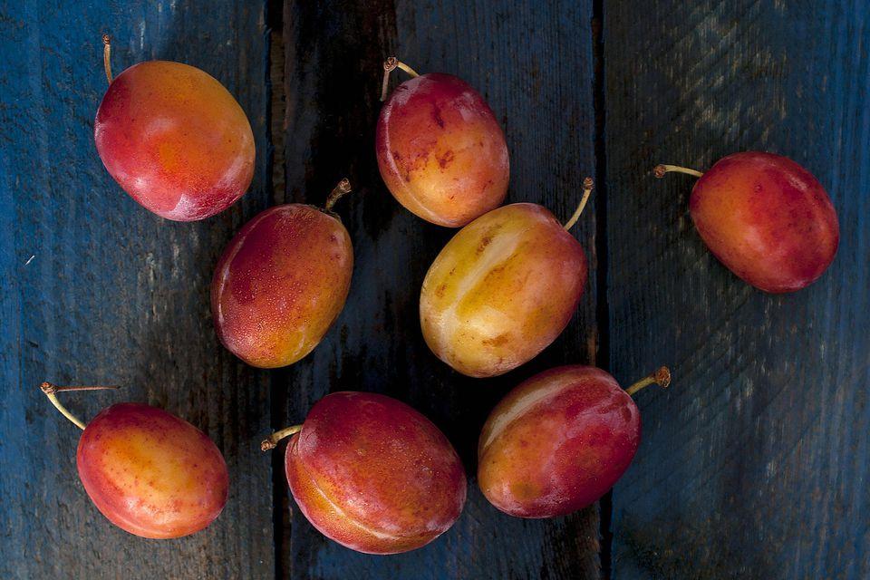 british-plums