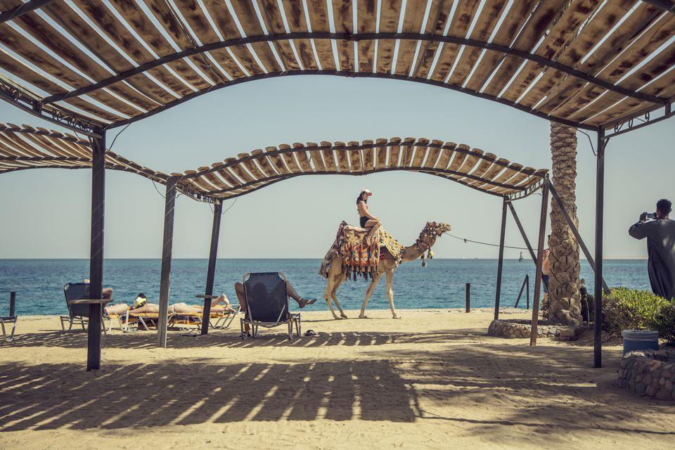 Girl riding on camel on the beach