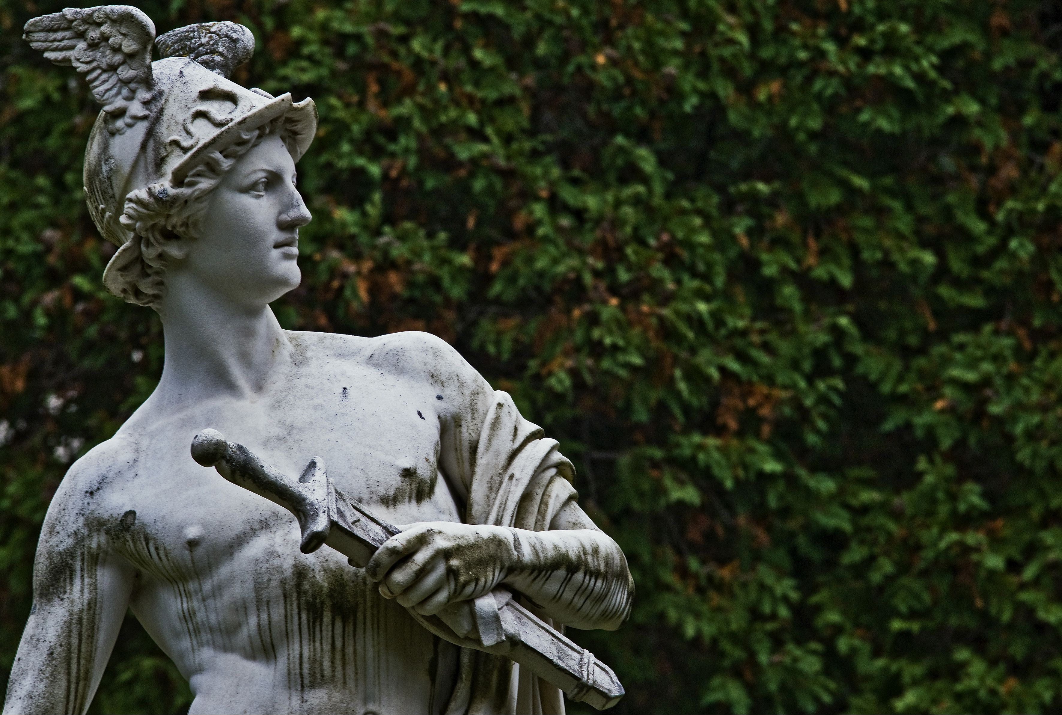 fast facts about the olympians the goddess hera