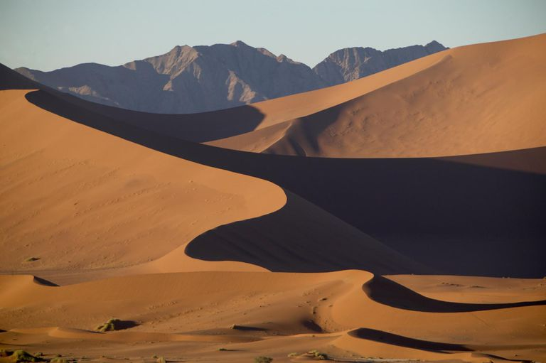 Winding dune ridge of the Namib Desert, Namibia.