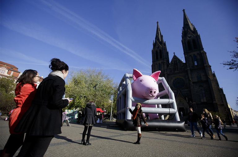 The giant inflatable sow in cage is seen as tourists take pictures during animal activists protest