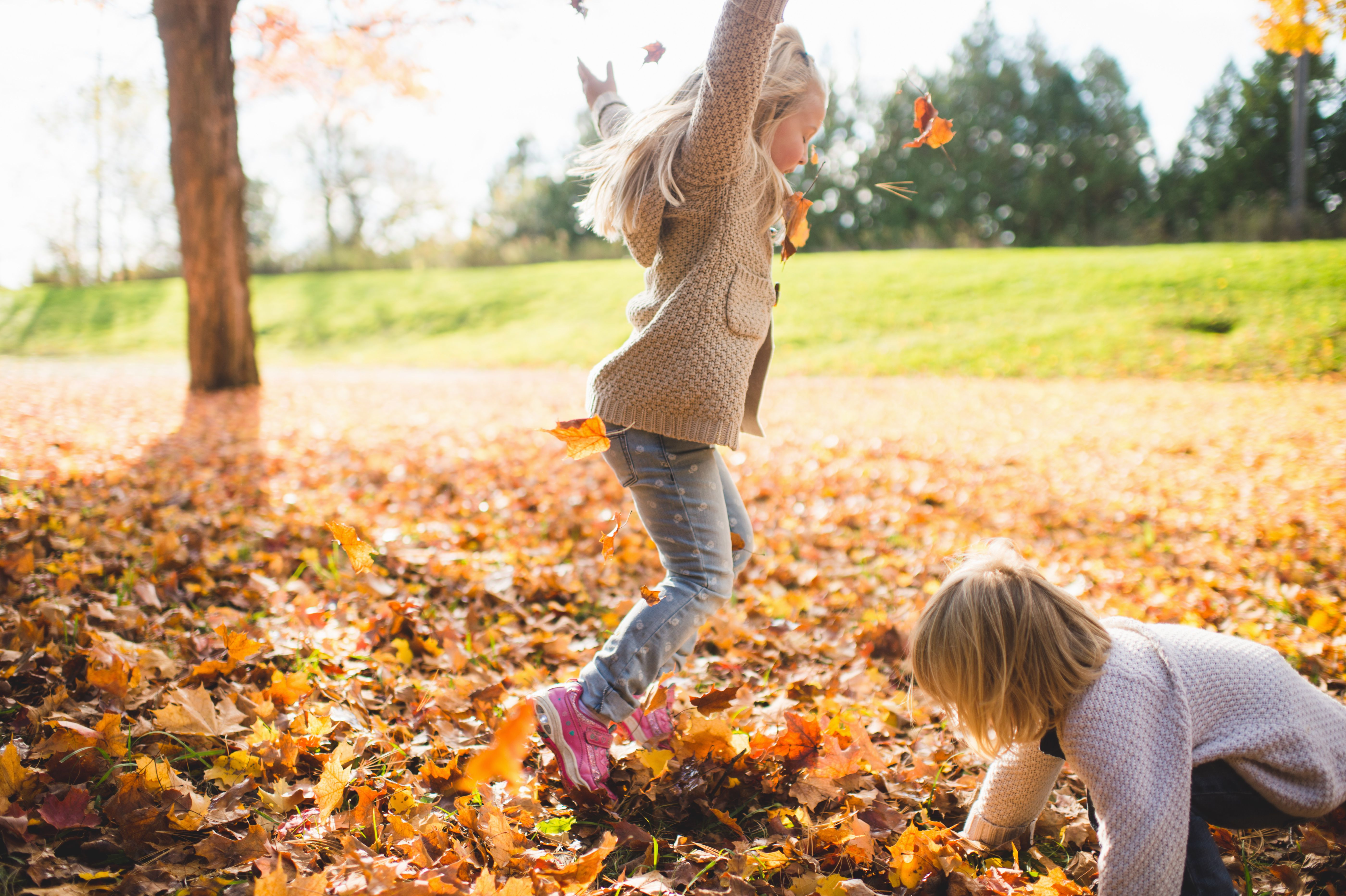 fun halloween activities that your kids are going to love