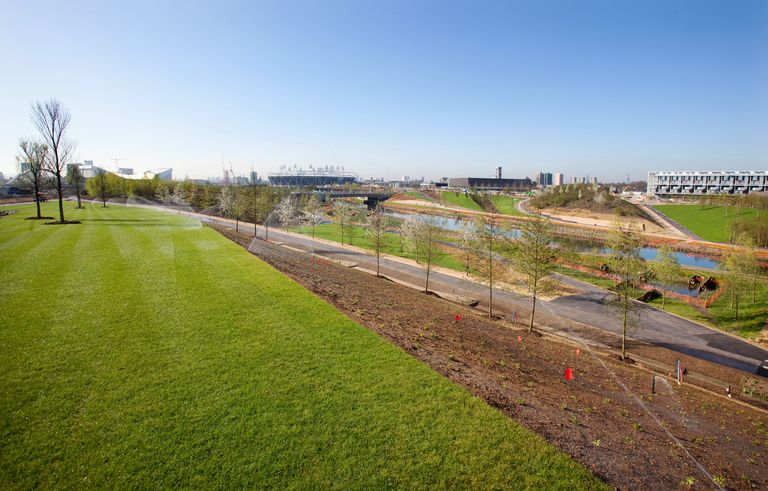 newly landscaped grass, trees, and pathways by a waterway