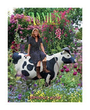 The Spring 2018 Annie's Annuals seed catalog