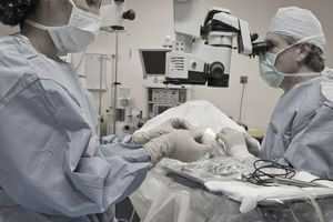 Surgical technologist works alongside the surgeon
