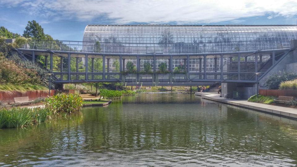 Walking Bridge, 21st Century Park, Myriad Botanical Gardens, Oklahoma City