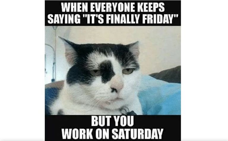 The 20 Best Friday Memes