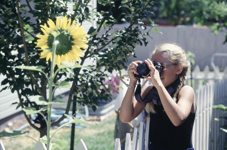 Girl Photographing Sunflower