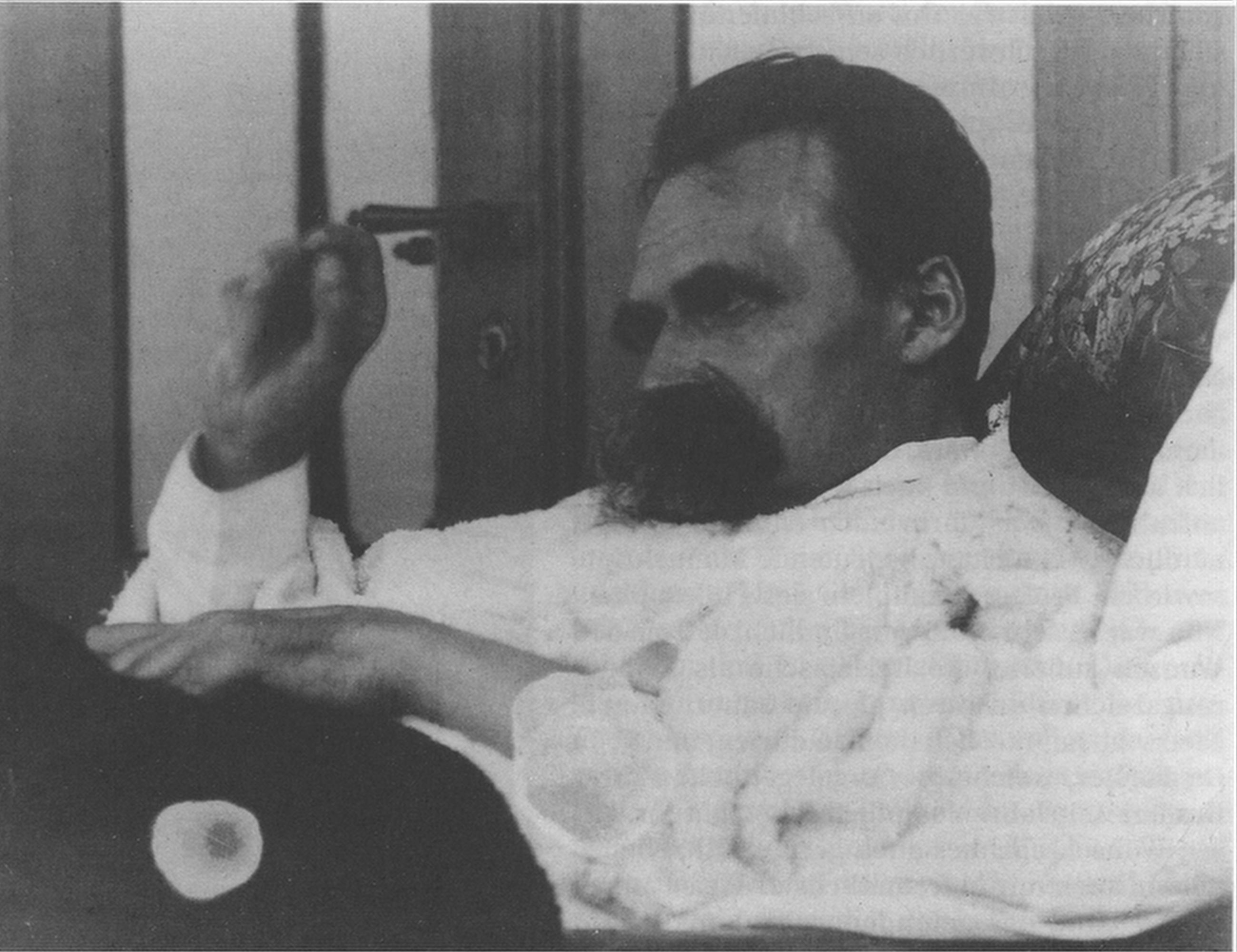 an introduction to friedrich nietzsches views on morality Daybreak - thoughts on the prejudices of morality by friedrich nietzsche  translated by r j hollingdale introduction by michael tanner.