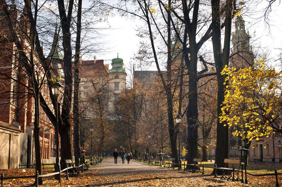 Golden Autumn in Krakow, Poland