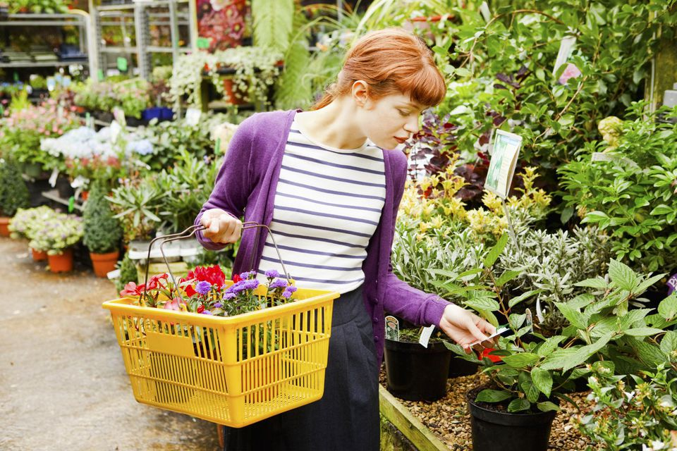 Young woman checks label on plant in garden centre