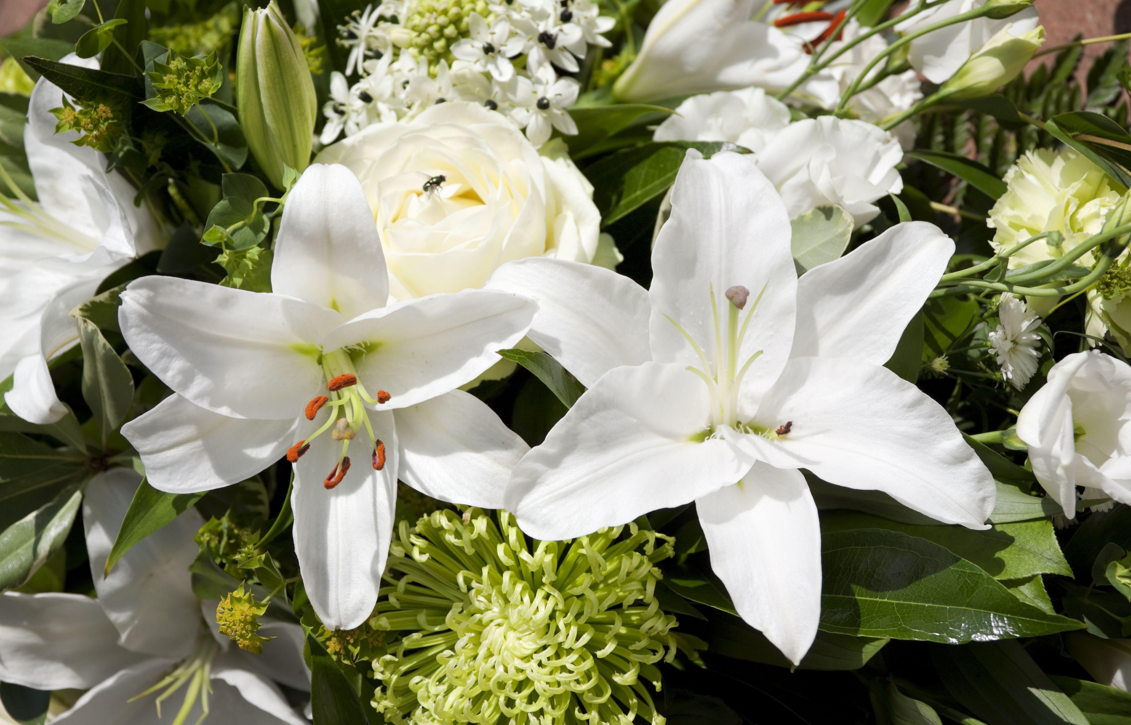 Proper etiquette for sending funeral flowers dhlflorist Images