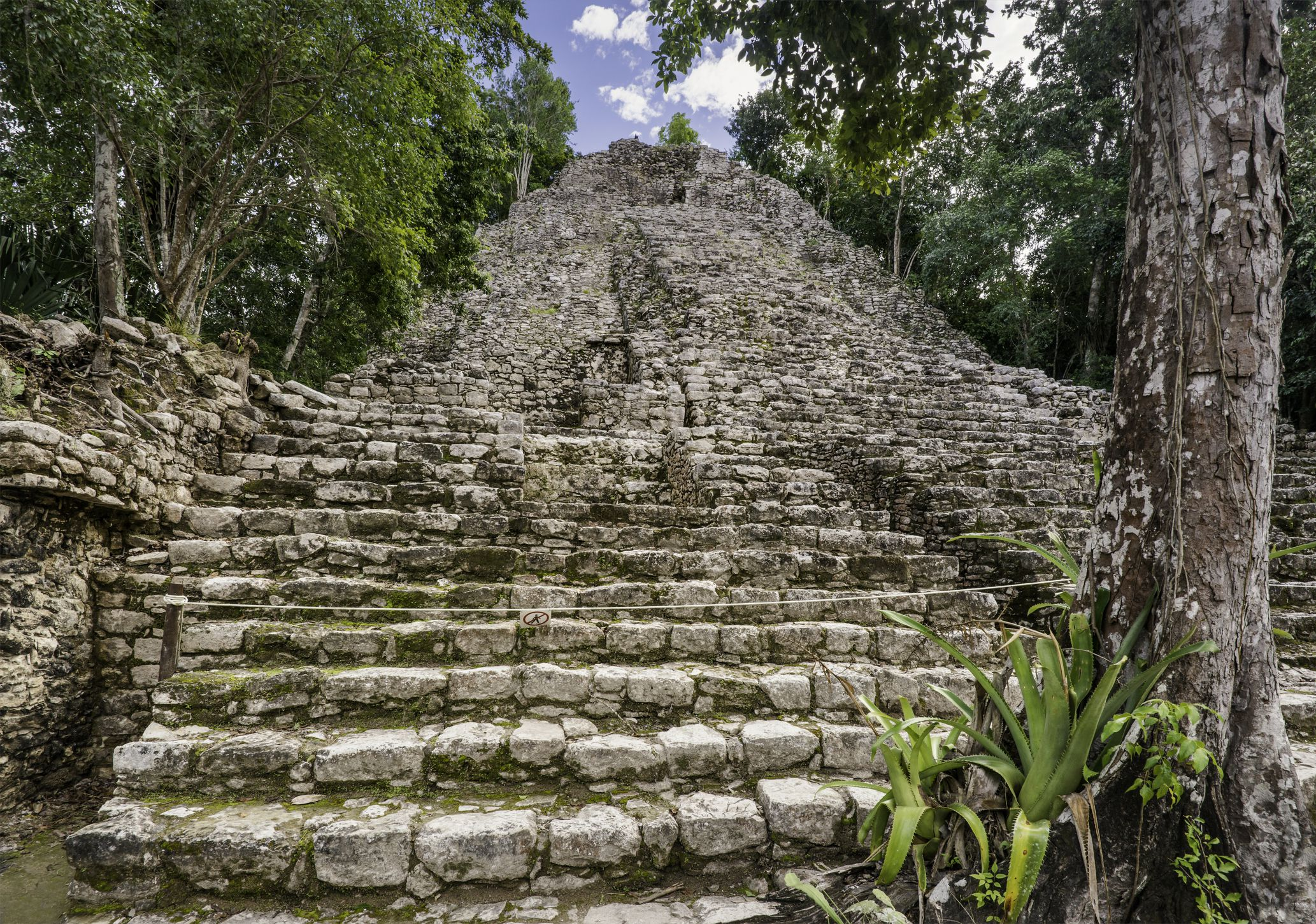 Visitors Guide To Cob 225 Maya Archeological Site
