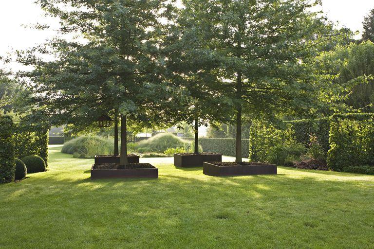 Formal Garden with Cor-ten Steel Planters ...