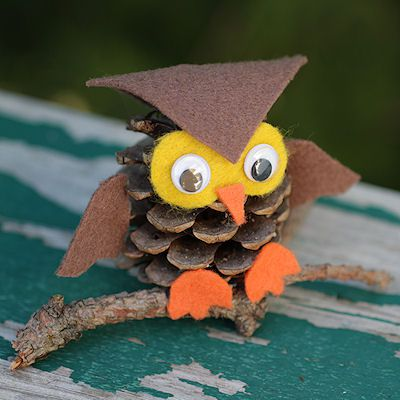 How to Make an Owl Out of a Pine Cone