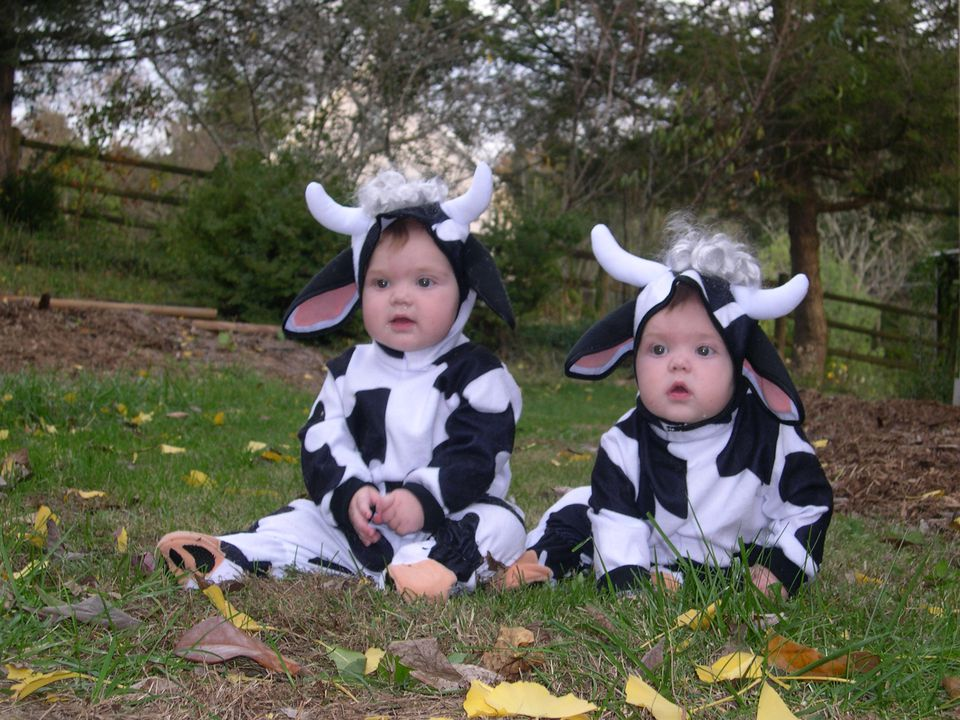 cow costume twins sammie and maggie - Webkinz Halloween Costumes