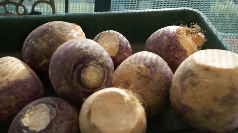 Rutabaga is a good source of vitamins, minerals and fiber.