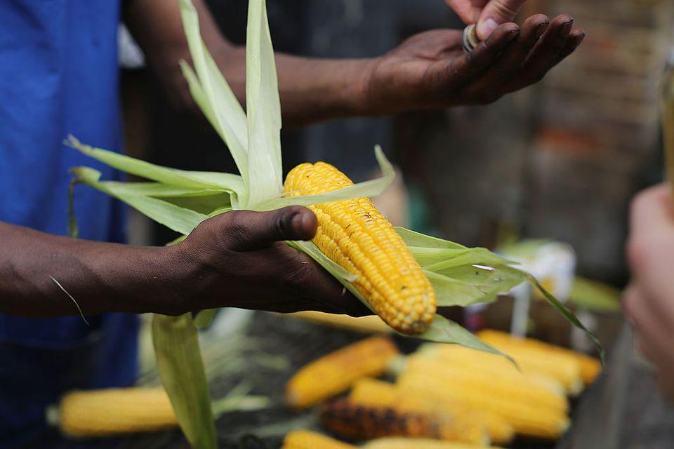 Man holding ear of corn