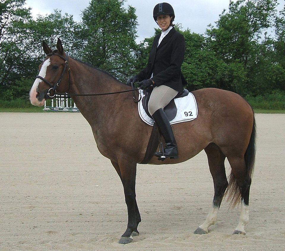 Sitting in the saddle-English