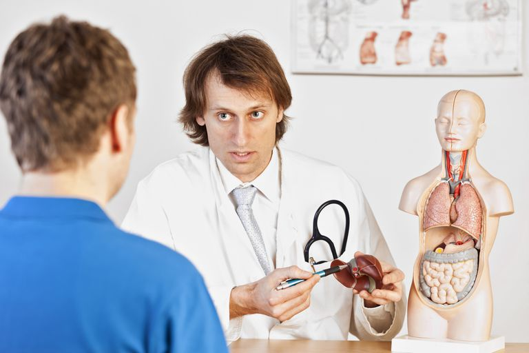 Doctor Explaining Liver