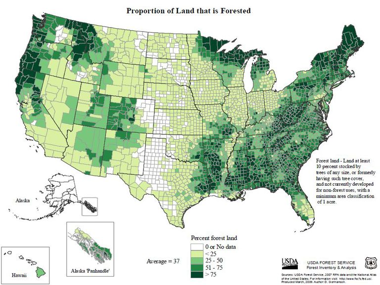 Where US Forests Are Located - Map of us green forests