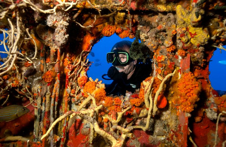 Wreck Diving on an artifical reef.