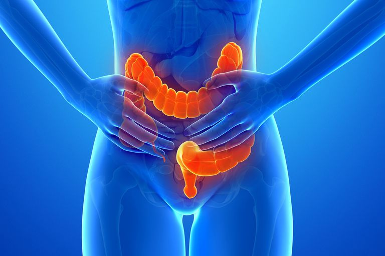 intestines (computer art)