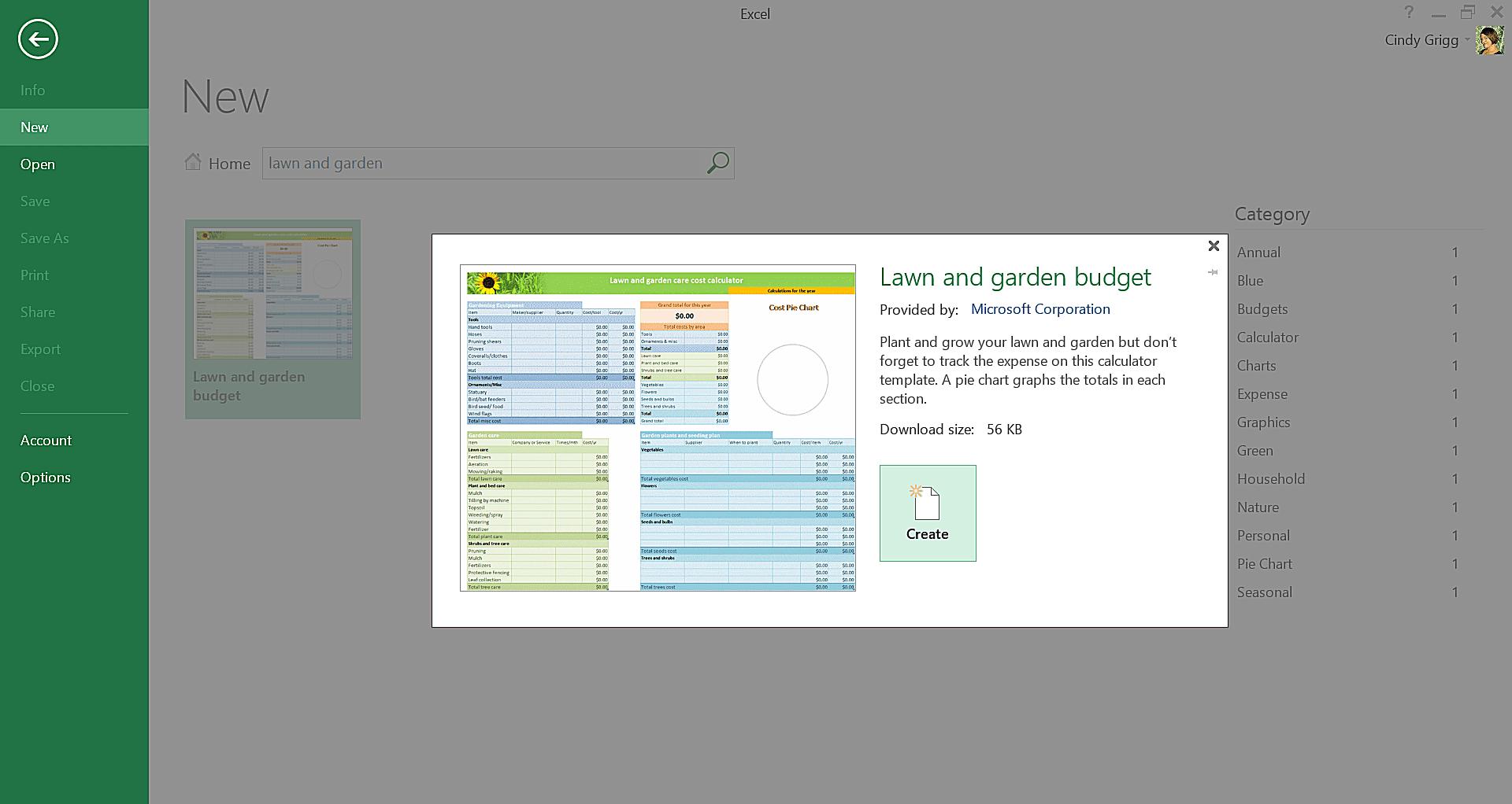 microsoft exel template