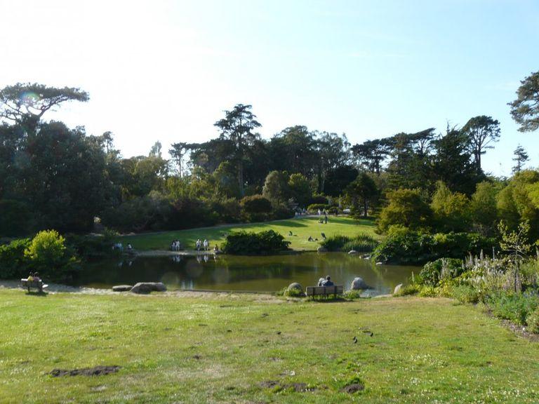 jardin-botanico-de-san-francisco.jpg
