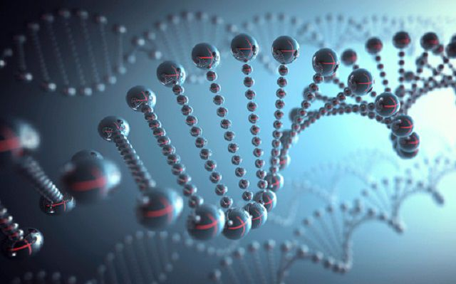 importance off dna typing Faqs benefits of dna typing: the dna typing service is a permanent record of  identification of individual animals and if parents are tested then the record also.