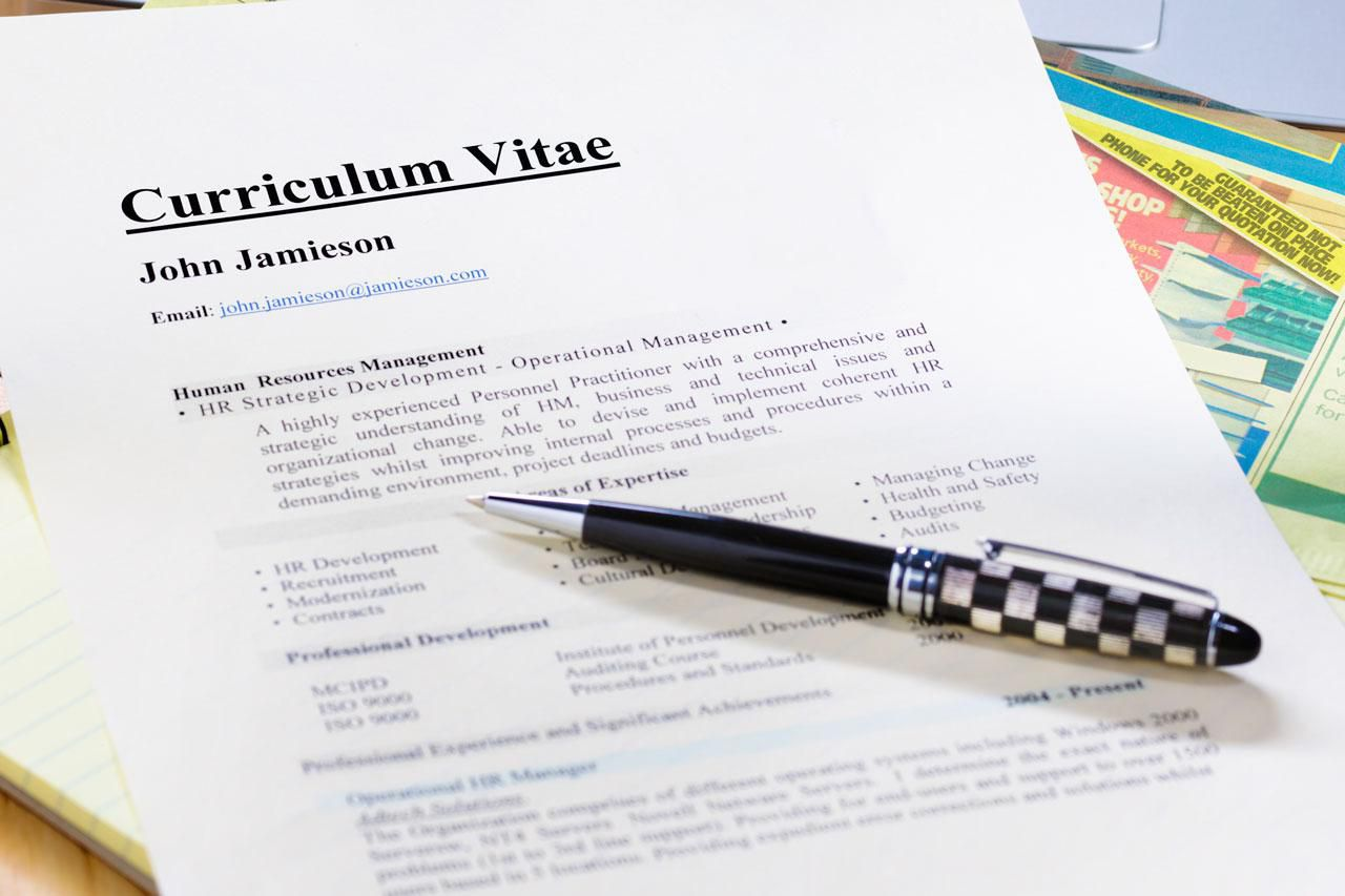 curriculum vitae  cv  format