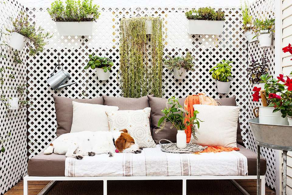 10 Dog-Friendly Ideas for Balconies on school pet ideas, backyard pet products, backyard pet activities, christmas pet ideas, kitchen pet ideas, halloween pet ideas, balcony pet ideas,