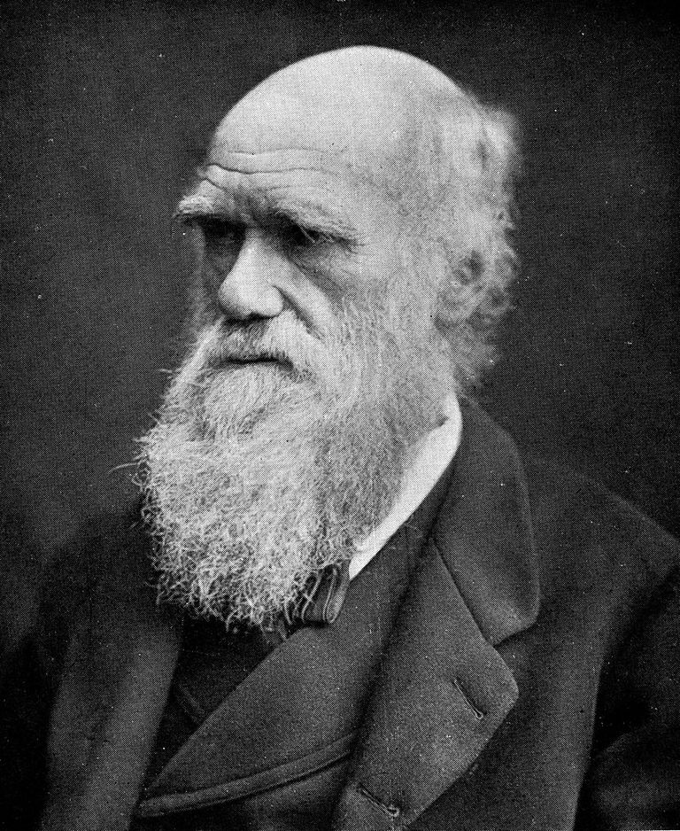 Portrait_of_Charles_Darwin._Wellcome_M00