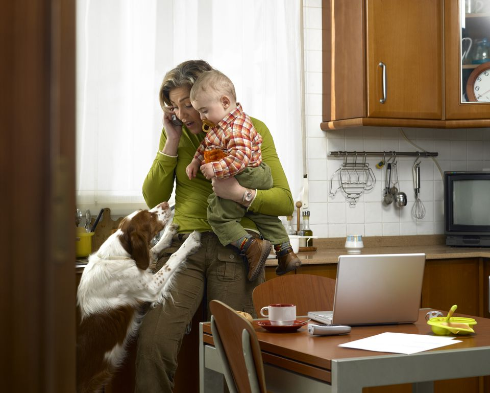 Dog jumping up at mother and son (9-12 months), woman using telephone