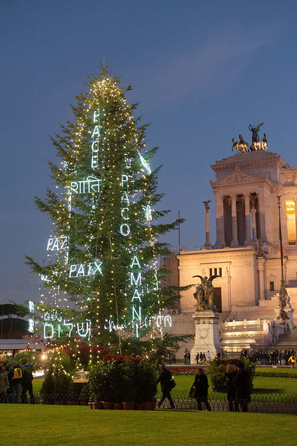 Christmas tree in Rome, Italy