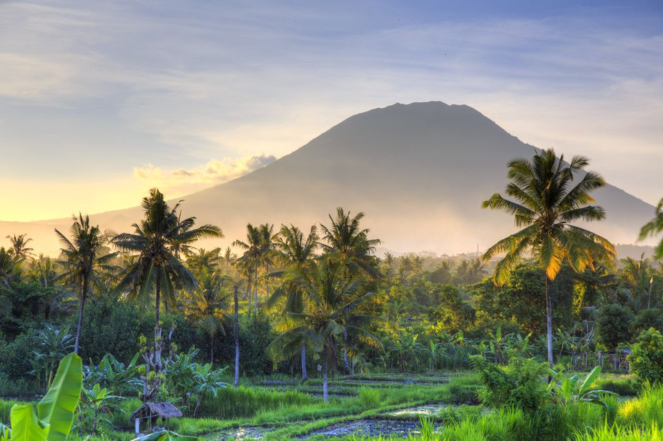 Indonesia Bali Rice Fields And Volcanoes