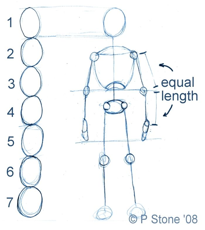 How to draw a basic manga character body proportions ccuart Gallery