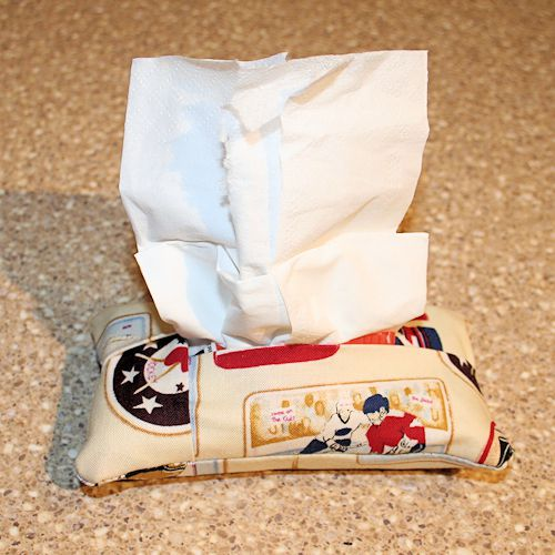 How to Sew a Facial Tissue Holder