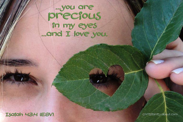 087-pixabay-leaf-117554.jpg