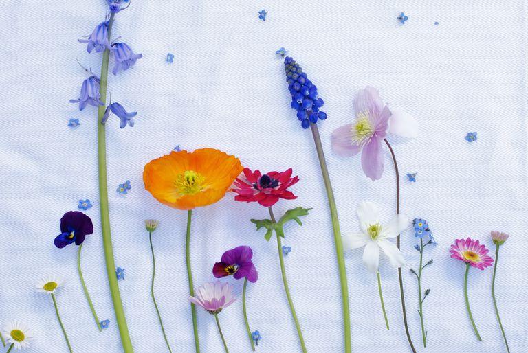 Ideas para boda en primavera - Paleta de colores primaverales.