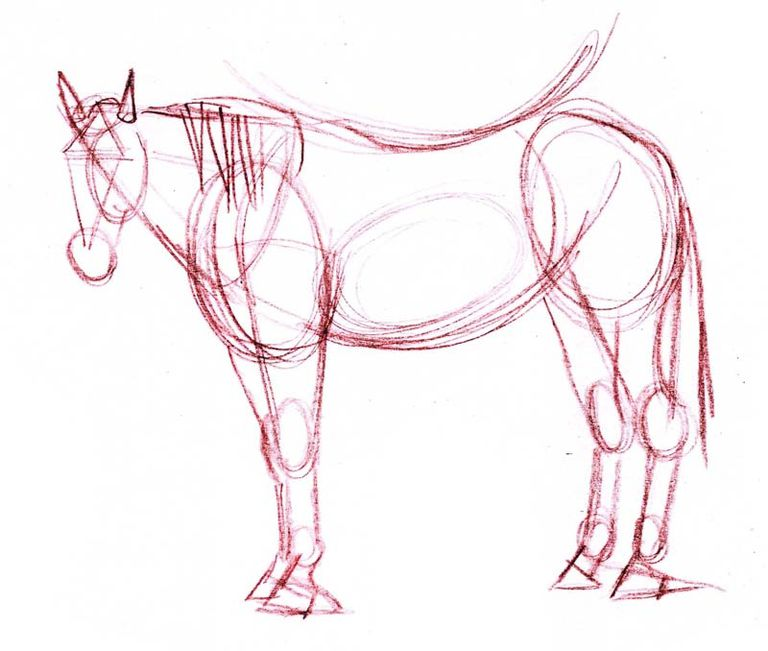 Drawing lesson a realistic horse in colored pencil the basic structural sketch of the horse drawing ccuart Images