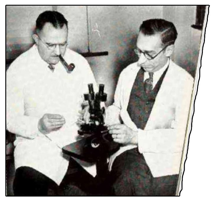 kraatz prepares to use microscope