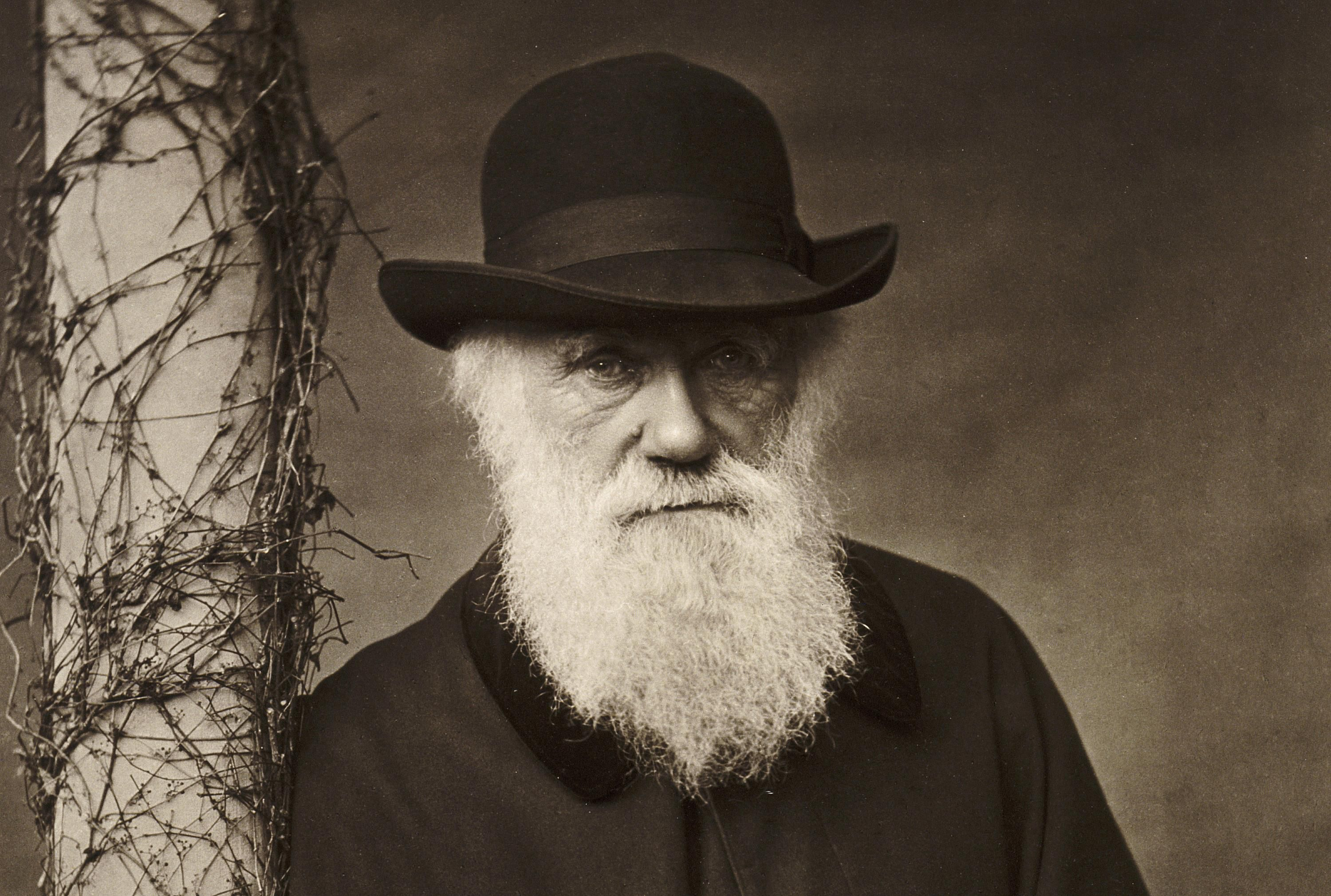 charles darwin author of on the origin of species 5 myths about charles darwin