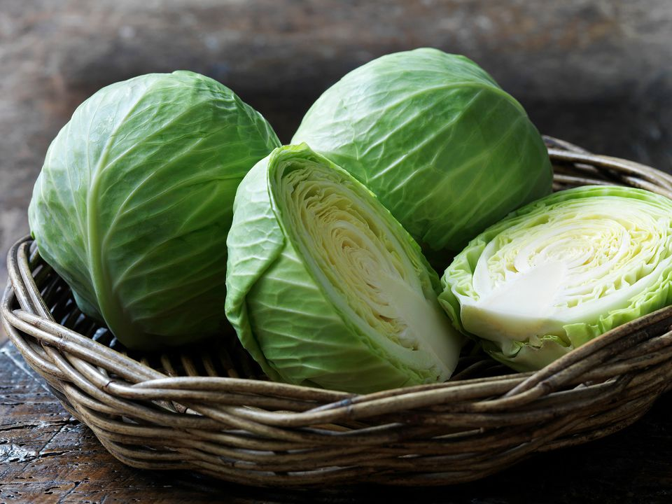 Simple And Easy Boiled Cabbage Recipe